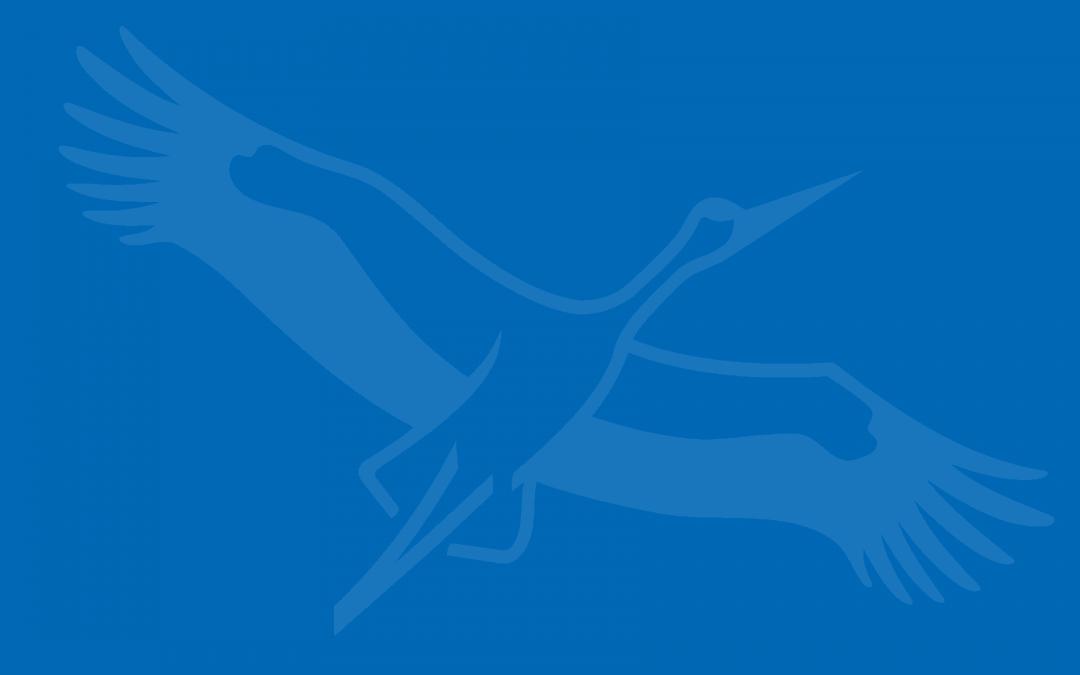 """Unterrichtserlebnis  """"Fledermäuse""""  der Grundschule Garbsen-Mitte"""