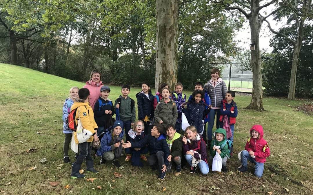 NABU führt Schulklassen in die Herbstwelt der Bäume